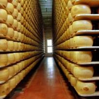 Dicas sobre maturação de queijos